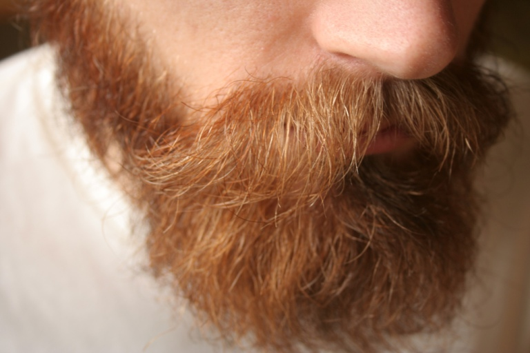 man with full beard shown from half face down